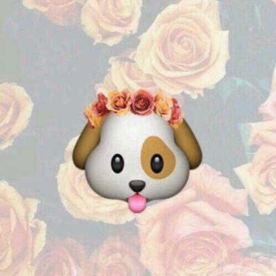 dog emoticon facebook