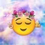 Como Ponerle Emojis A Las Fotos Online